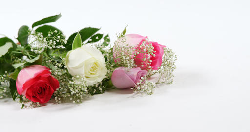 Bouquet of red, white and pink roses on white background 4k Live Action