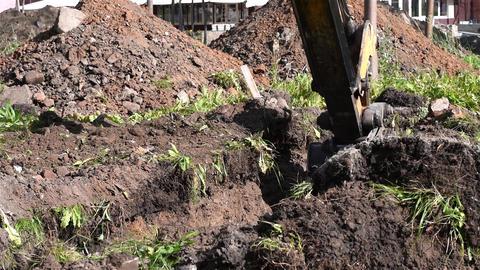 Working excavator Live Action