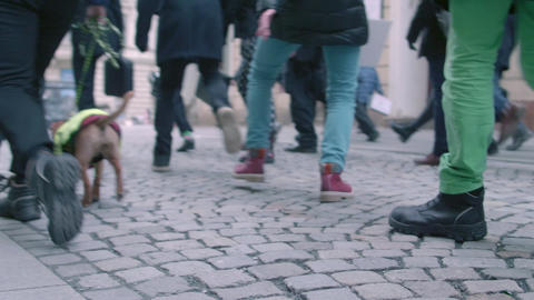 Steps on International Silly Walk Day, Brno, Czech Republic Footage