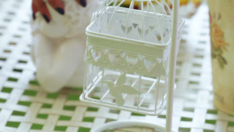 Decorative cage and flower Live Action
