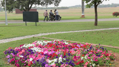 Garden And Park stock footage