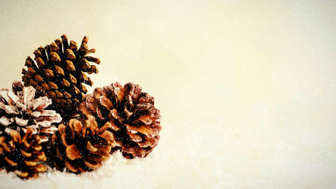 Fir cones combined with falling snow Animation