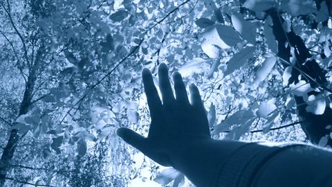 POV of hand of man who moves it in air, through fingers through rays Live Action