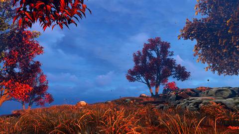 Autumn trees and blue sky Animation