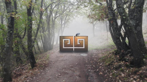 MISTY FOREST LOGO After Effects Template