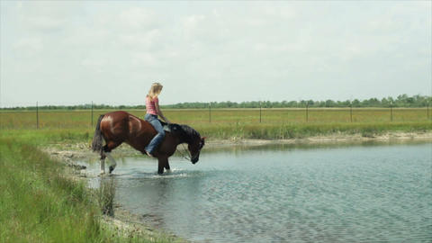 riding the horse in the pond Footage
