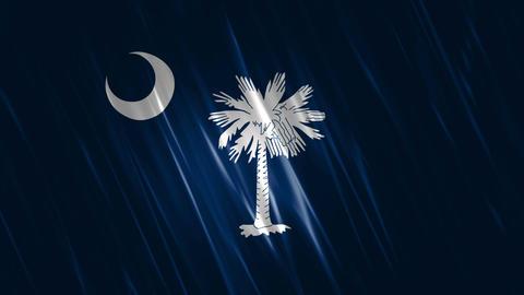 South Carolina State Loopable Flag Animation