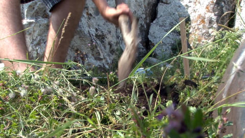 Archaeologists cleaned with shovels thin layer of earth with grass lot located a Footage