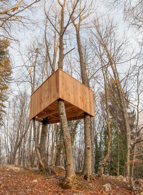 house built on tree Fotografía