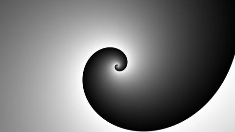 Psychedelic spiral in black and white. Hypnotic swirl vortex hypnotic spiral Animation