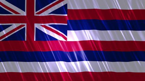 Hawaii State Loopable Flag Animation