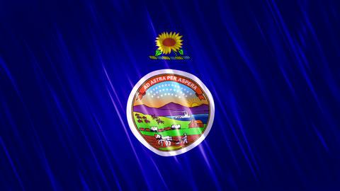 Kansas State Loopable Flag Animation