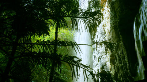 Flowing Waterfall Seen Through Tropical Plants Footage