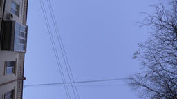 Down top shot of moving buildings and flying birds on blue sky background ビデオ