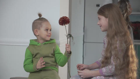 Little boy in green pajamas gives flower to his sister. Family relationship Footage