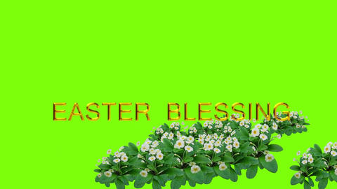 animated Green background with flowers and text for Easter Animation