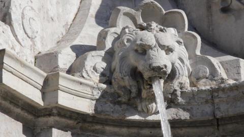 Fountain-lion Live Action