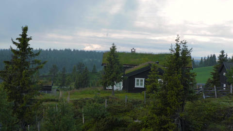 Norwegian typical grass roof country house ビデオ