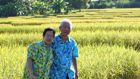 Fun at Video of Asian senior couple hugging in front of rice field. Travel in Archivo