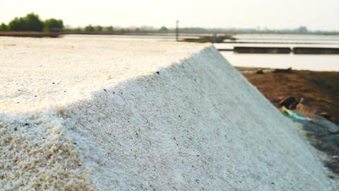 Heap of sea salt in salt pan, salt field with morning sun Live Action
