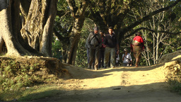 Tourists walking through tree road ,Bandipur,Nepal Footage