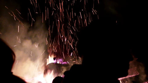 huge fire from tree trunks Footage