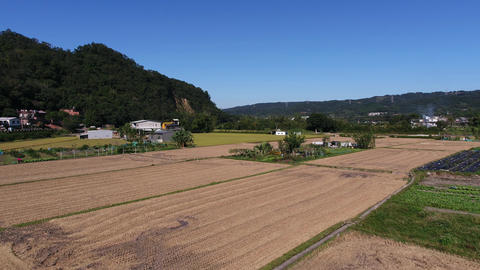 Aerial shot of paddy field in countryside Footage