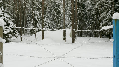 Small military old bunker surrounded by barbed wire in winter forest Archivo