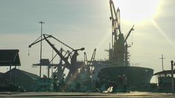 Harbour and morning yoga,Yangon,Burma Footage