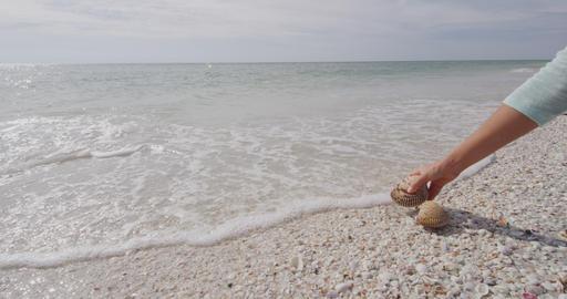 Seashells on beach - woman shelling picking up sea shells Sanibel Island Florida Live Action