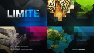 Limites Colourful Title After Effects Template