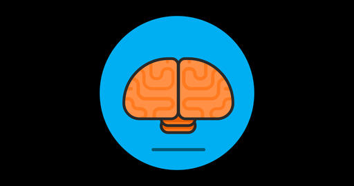 Brain Premium flat icon animated with alpha channel Live Action
