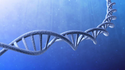 Looping animated dna molecule Animation