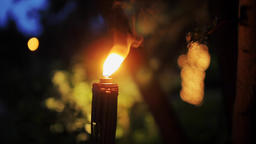 Burning Torch with a Bright Orange Flame in the Night in a Garden or Park 영상물