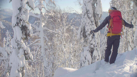 Skitour in Siberia. A man standing on the peak in a snowy forest Live Action