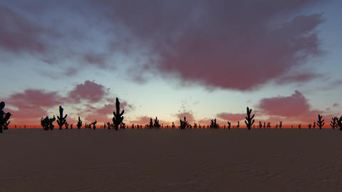 Sunset sky background. Beautiful dramatic cloudscape. Beautiful night sky Live Action