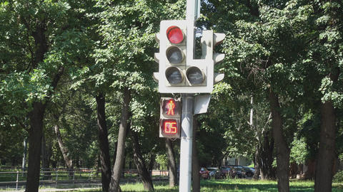 The traffic light for pedestrians from the red signal switches to green Footage