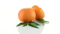Tangerines Footage