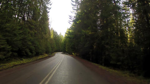Road Through the Woods in Mountains Stock Video Footage