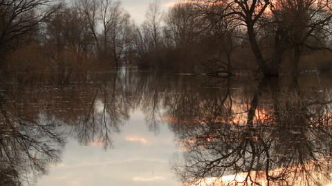 Spring floods Stock Video Footage