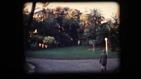 Vintage 8mm. Park with palm trees Stock Video Footage