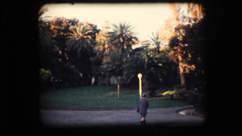 Vintage 8mm. Park with palm trees Footage