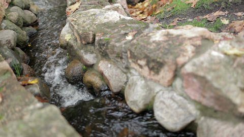 The stream in a city park Stock Video Footage