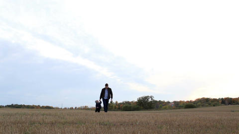 Young father with his son walking in the field Stock Video Footage