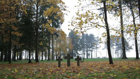Three tombstone crosses. Cemetery of German soldiers in Toila, Estonia. Autumn Footage