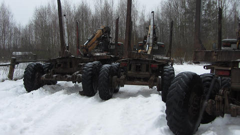 timber trucks Live Action