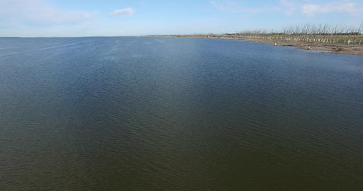 Aerial drone scene of flemish flocks flying over a lake at epecuen, buenos aires Footage