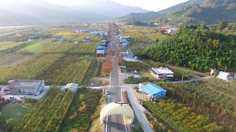 Aerial View of Pear Farm Street in Hadong, Gyeongnam, South Korea, Asia Live Action