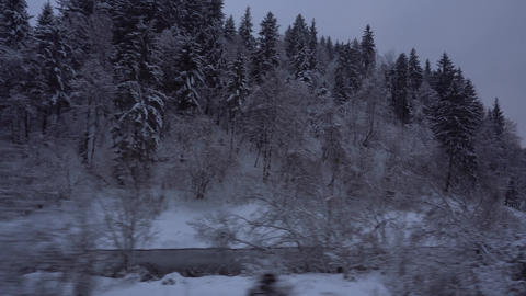 Traveling by train snowy woods with river Footage