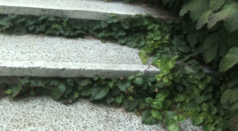 stairs outdoor GIF